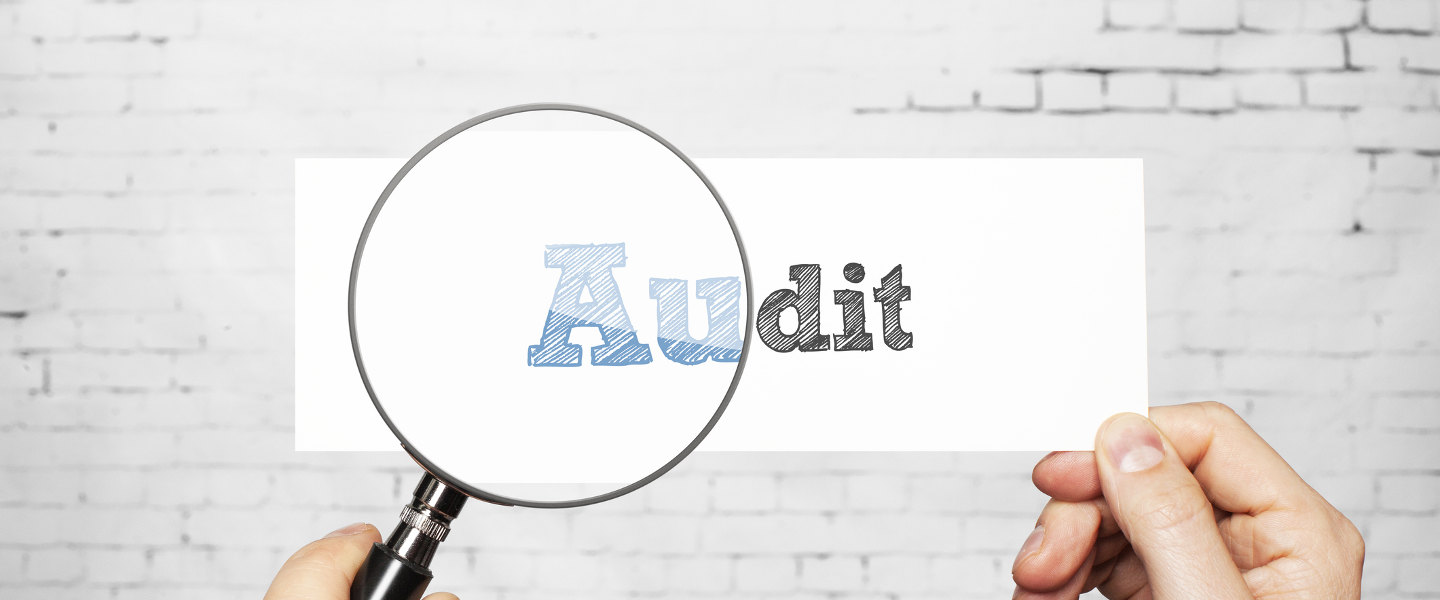 SKILLED AUDIT AND TAXPAYER REPRESENTATION SERVICES